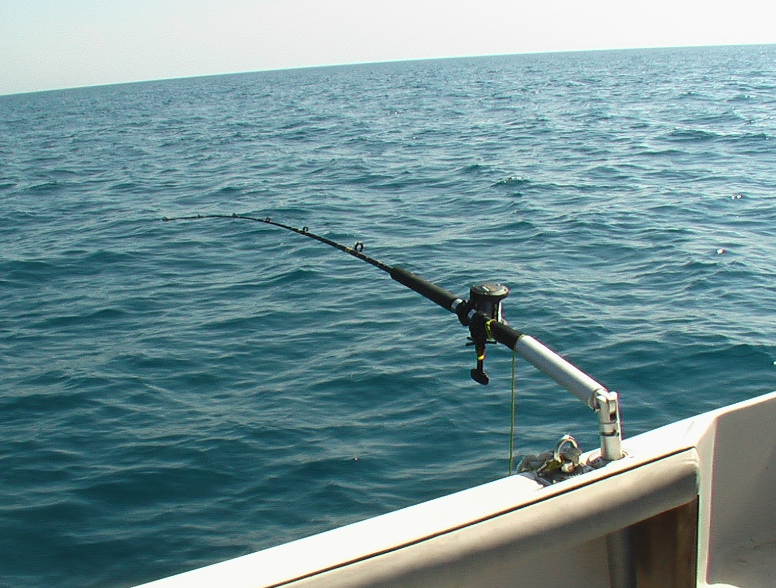 Pesca Alla Traina Pesca a Traina Con Artificiali